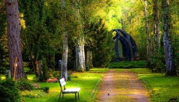pad in het bos met bankje