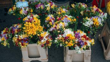 bloemen bij bloemenstal